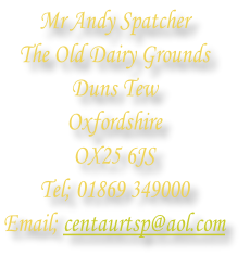Mr Andy Spatcher